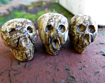 Picture Jasper Carved Skull bead lot : (3 pieces)