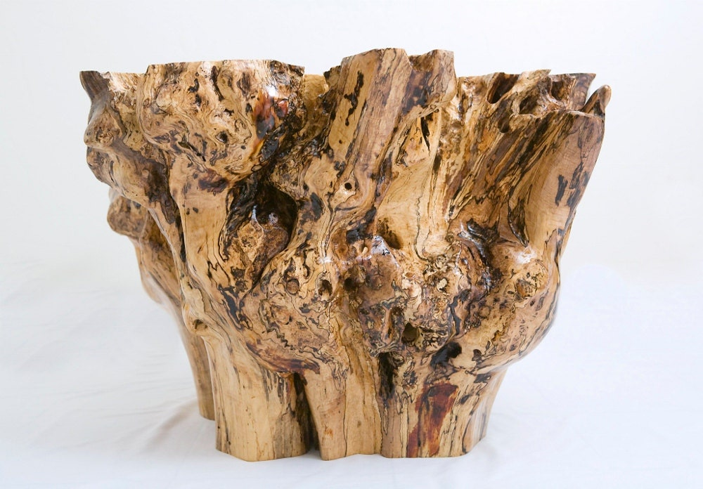 Sycamore Tree Stump Coffee Table