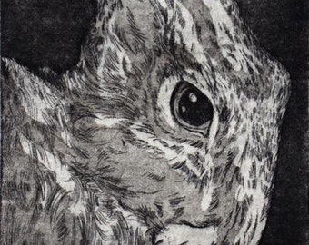 Hare and Moon (II) Etching