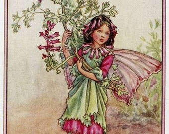Fumitory Flower Fairy Vintage Print, c.1950 Cicely Mary Barker Book Plate Illustration