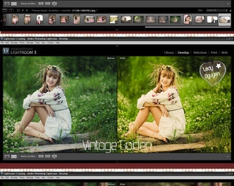 INSTANT DOWNLOAD Back to Classics Lightroom Presets