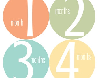 Baby Monthly Stickers, Monthly Bodysuit Stickers, Monthly Baby Stickers - Orange, Blue, Baby Shower Gift, Gender Neutral