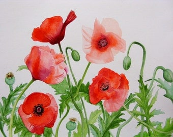 Red poppies print poppy art poppy prints red poppies watercolor print poppy paintings