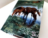 Grazing horse photo album 100 photos.