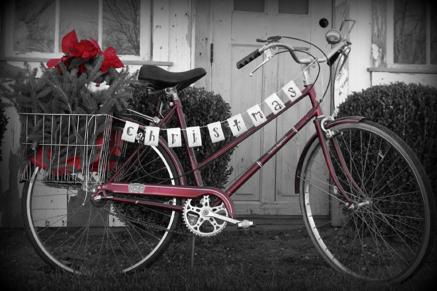 Sale Vintage Bicycle Brittany Free Spirit By Lightandlaughter
