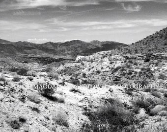 Palm Desert Landscape, Black and White Photography, Wall Art