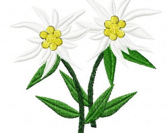 Embroidery pattern - Pair of Edelweiss2