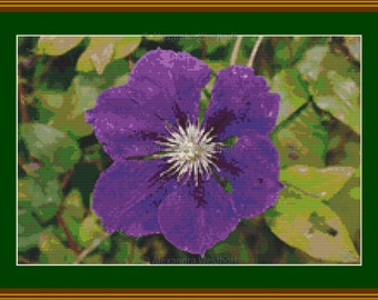 "Cross stitch chart ""Clematis 2"""