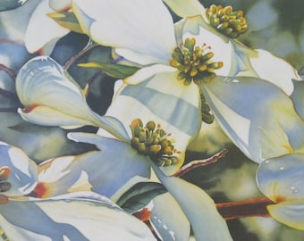 Dogwood - Watercolor Art Print - Floral Art Prints