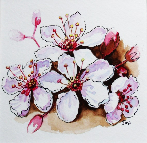 Articoli simili a fiori di ciliegio acquerello dipinto for Fiori di ciliegio dipinti