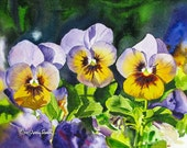 "Pansy Trio - 7"" x 10"" Archival Watercolor Print S/N Ltd. Ed. by Andy Sewell"