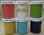 Sample Paint Kit for Retailers