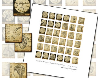 Antique French Medical and Anatomy Scrabble tile digital collage sheet .75 x .83 in 19mm x 21mm