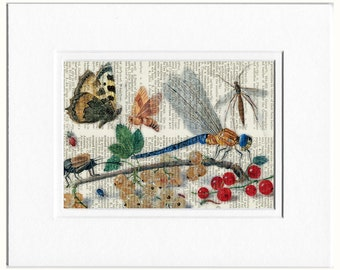 Insects print, 1650's romantic nature I print