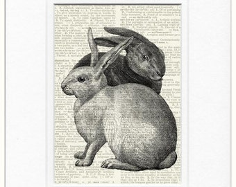 Rabbits Two dictionary page print
