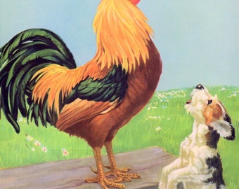 Rooster Crowing Dog Barking Lambs Leaping Spring in the Barnyard Childrens Storybook Illustration by Diana Thorne