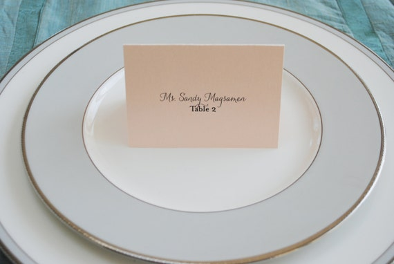 Blush Pink Wedding Escort Cards or Place Cards - Jessica and Jeffrey