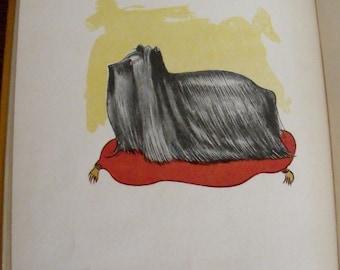 The Book of Bow-Wows - Elizabeth Gordon - 1913 - RARE