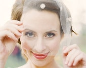 Juliet: birdcage veil with silver vintage detail and crystals