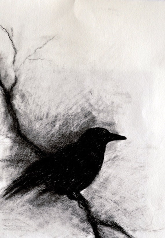 blackbirds drawing - photo #32