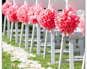 Wedding Ceremony Aisle Decoration .. set of ten 9 inch tissue poms