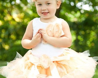 Baby Girls Birthday Tutu Dress, Peach Birthday Dresses for Toddler Girls, Cake Smash Outfit and Birthday Photo Props, Cakesmash Sets