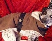 Sherpa-lined dog coat