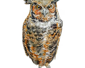 Great Horned Owl Archival Quality Print - From the Original Watercolor