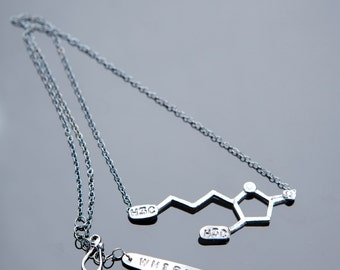 Whiskey Chemical Structure Necklace in Sterling Silver