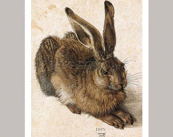 Bunny Rabbit 5 x 7 Print - Albrecht Durer Hare Vintage Image Repro Print
