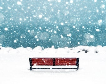 Snowfall,Water, Snow, Winter, Snowflakes, Ice Blue,White,Cold, Solitude, Bench,Brown,Fine Art Photography Print 8x10