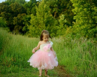 Pink Flower Girl dress, Champagne Blush Pink Flower Girl Dress, Tulle Dress, Tutu Dress, Blush girls dress, Baby girls dress, party dress