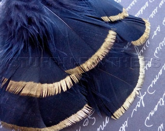 GOLD DIPPED black feathers, metallic gold tip hand painted individual real turkey feathers loose / 3-5 in (7.5-12.5 cm) long, 6 pcs/ F115-3G