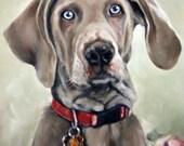 Custom Pet Portrait, Pet Oil Painting, 8x10, Animal Painting, Custom Dog Portrait, Custom Pet Oil, Original Art