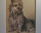 CAIRN TERRIER DOG Vintage mounted 1937 Lucy Dawson Sally dog plate print Unique Christmas Birthday Congratulations Thank you dog lover gift