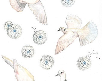 Birds wall decals - wall decor - kids wall art - kids art print - art for kids