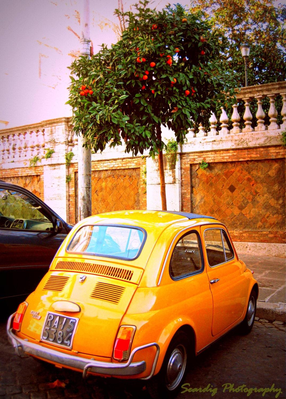 Rome vintage fiat 500 orange tree photo wall art decor for Antique car decor