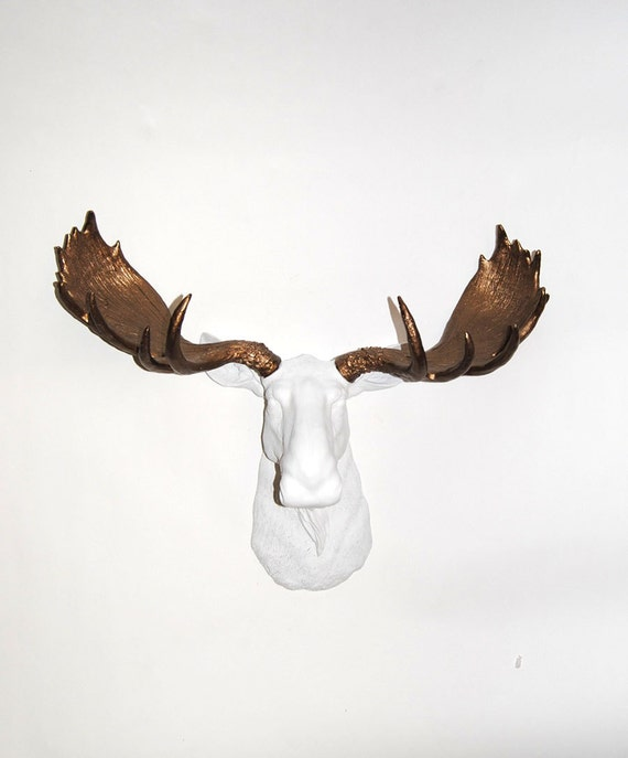 Faux moose head the boston white head w by whitefauxtaxidermy - Fake moose head mount ...