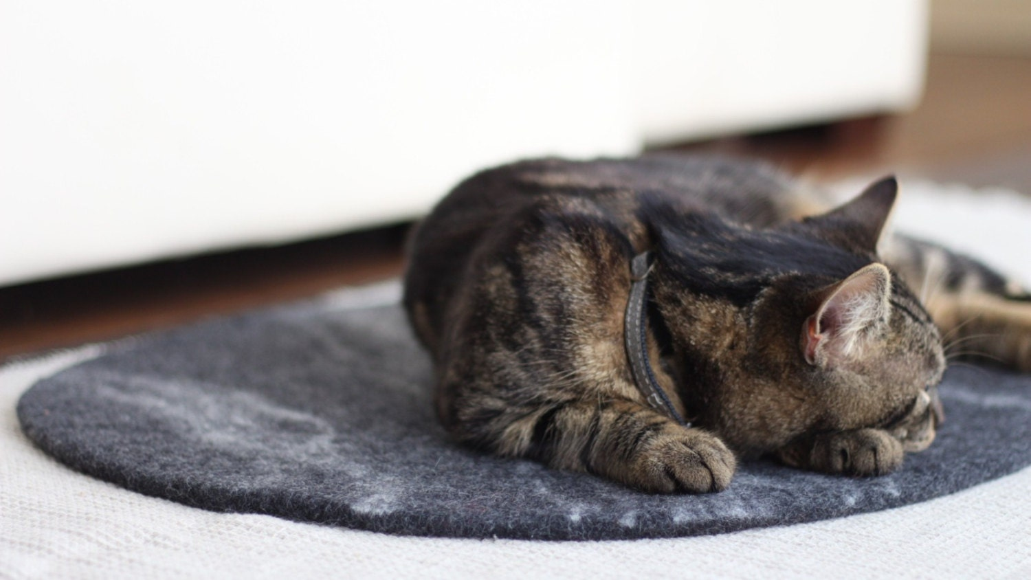 Felted Dark Grey Cat Mat Bed Rug Pad Sleeping Place By