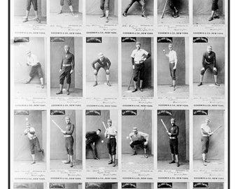 1887 Washington Senators Baseball Team Baseball Cards Photo Print Poster Old Judge Tobacco Cards