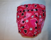 Hearts One Size Cloth Diaper with insert