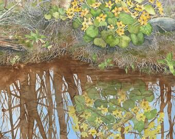 Marsh Marigolds giclee print
