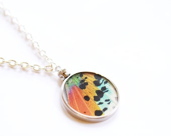 Real Butterfly Wing Glass Necklace, Sunset Moth Necklace, Butterfly Wing Pendant, Wing Necklace, Gift for Her under 30, Urania ripheus, OOAK