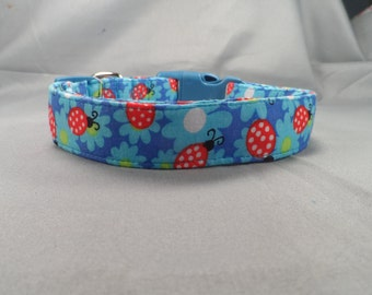 Blue Flowers and Ladybugs Dog Collar