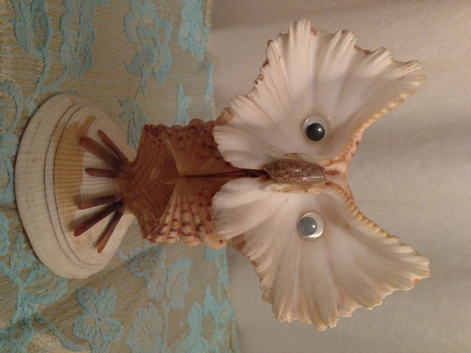 Owl made out of sea shells for What are shells made of