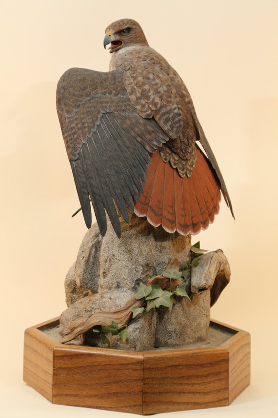 Red tailed hawk wood carving