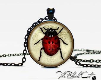Ladybird necklace Ladybird necklace Ladybird pendant the bug pendant bug jewelry vintage style ladybug lady-beetle