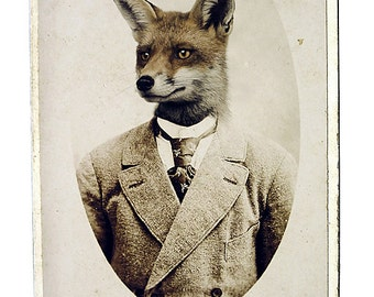 Young Mr. Fox: Fox Art Print