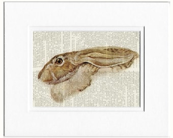 rabbit dictionary page print