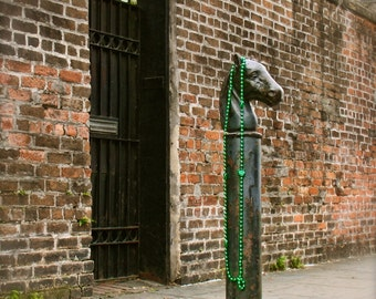 Mardi Gras Horse, Fine Art Photo, New Orleans, French Quarter, Travel Photo, Mardi Gras Beads, Antique Hitching Post, Home & Office Art